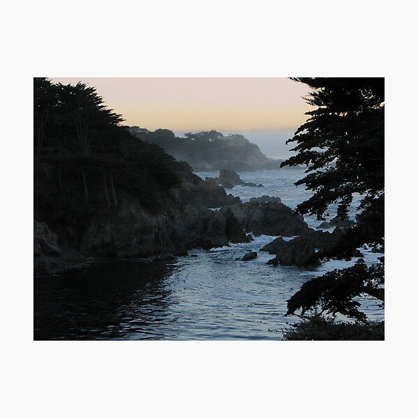 View of Point Lobos Photographic Print