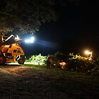 Night Harvest - Magpie Springs - Adelaide Hills Wine Region by MagpieSprings