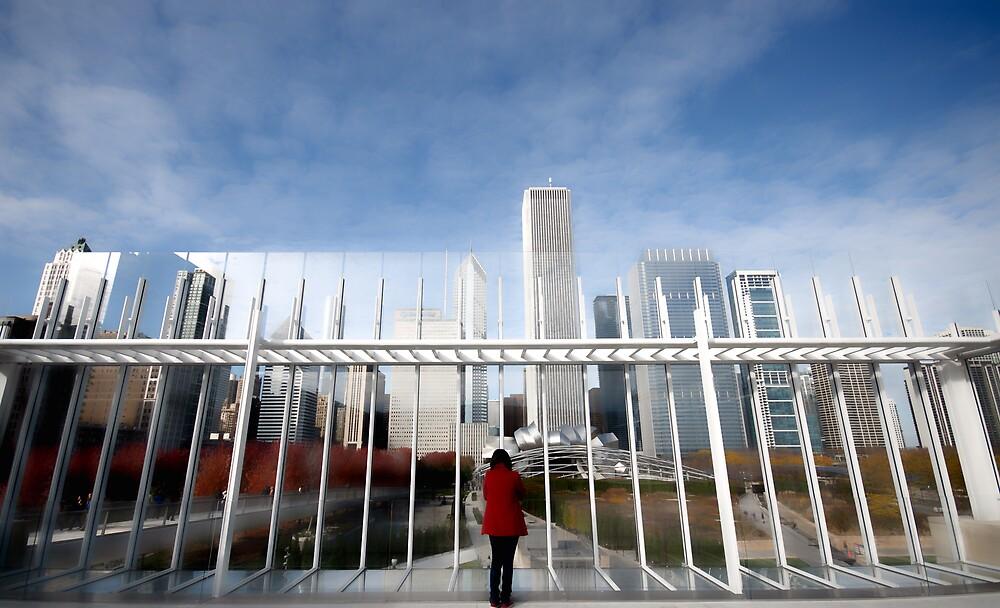Chicago Skyline by Vasanth Arun