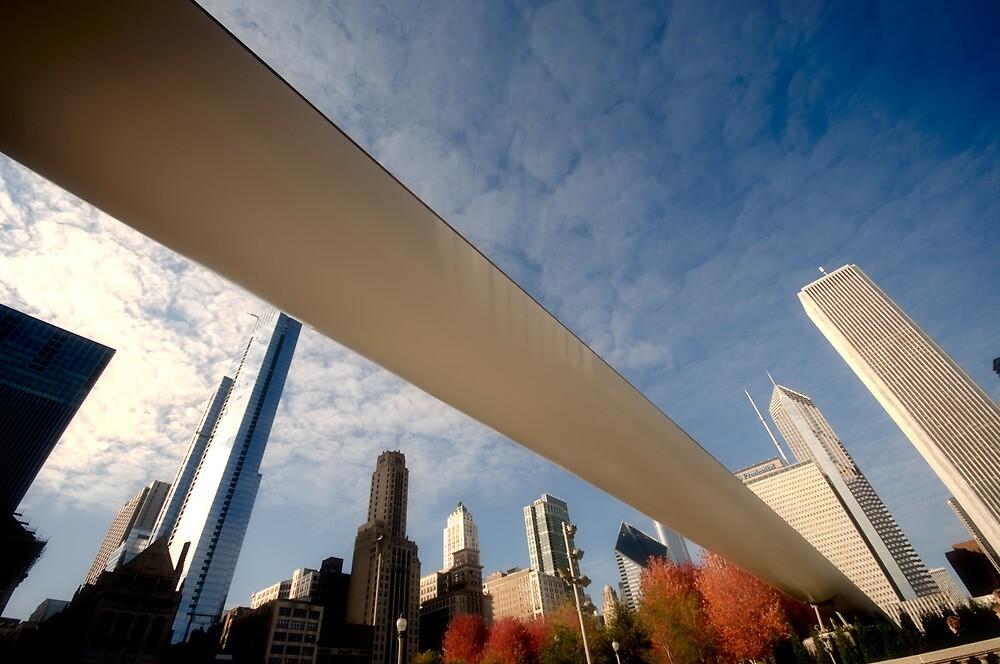 Millenium Park - Chicago by Vasanth Arun
