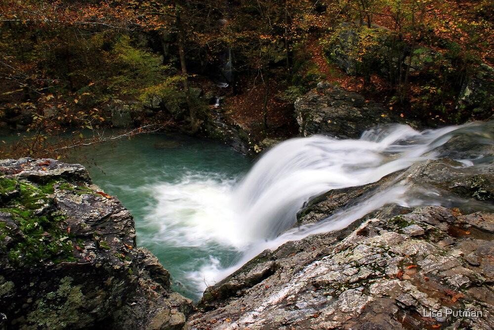 Falls Creek Falls II by Lisa G. Putman