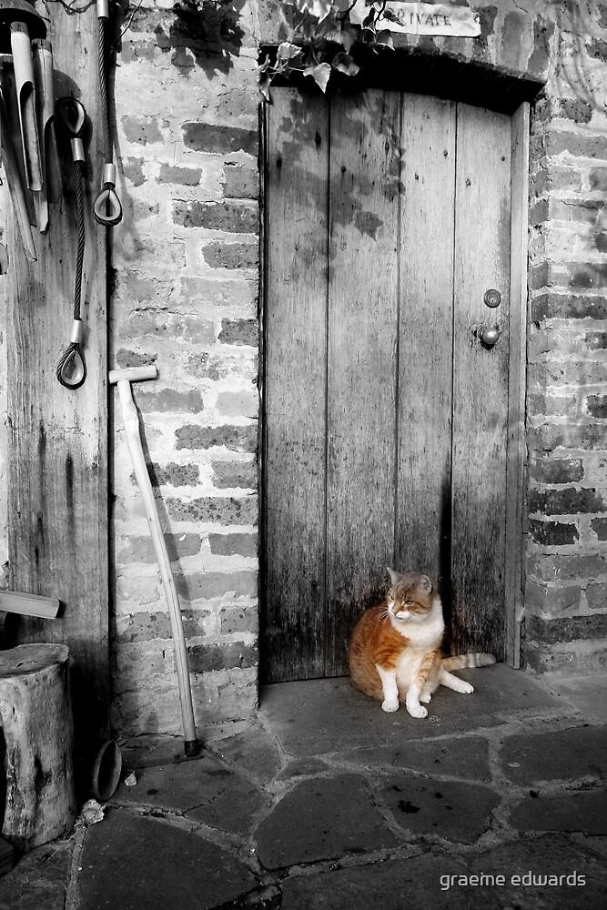 Cat On Mat-Montsalvat,Victoria by graeme edwards