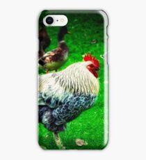 Roosting iPhone Case/Skin