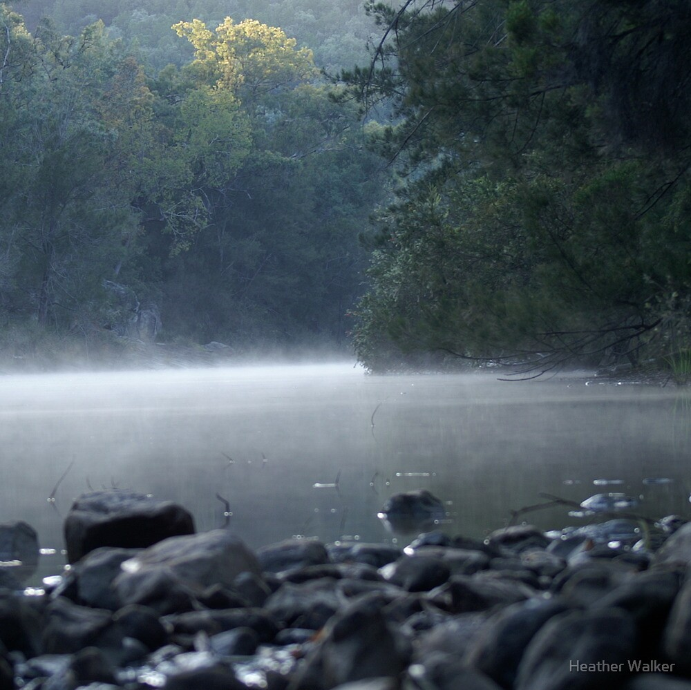 New Dawn by Heather Walker