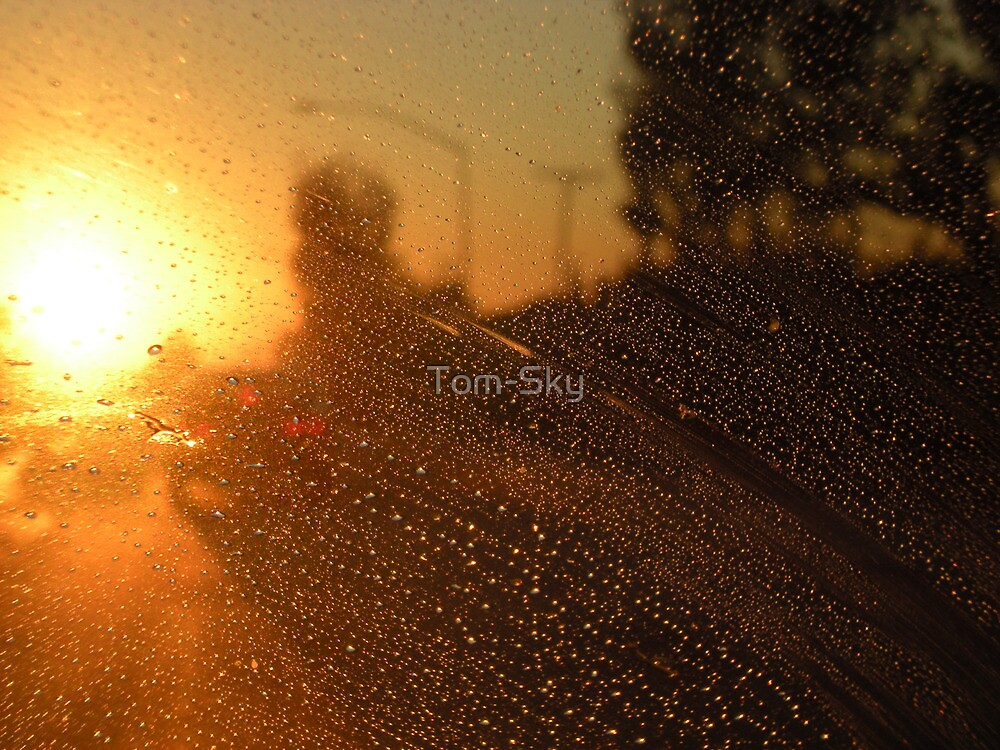Traffic by Tom-Sky