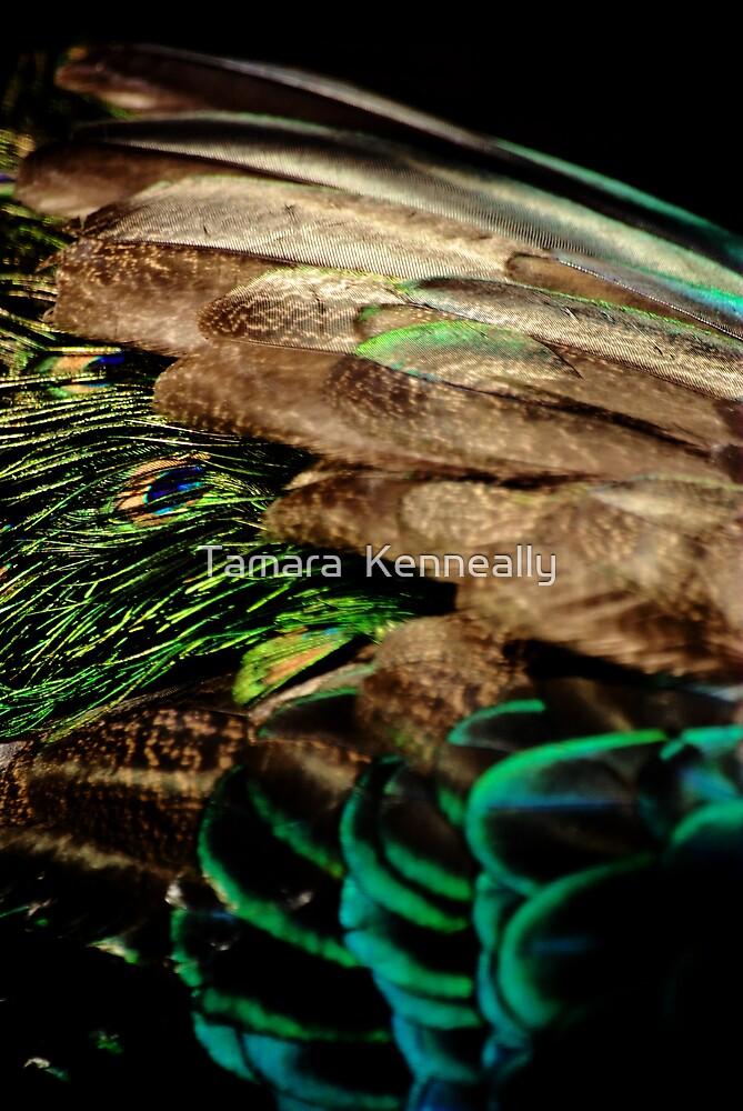 Green Peafowl by Tamara  Kenneally