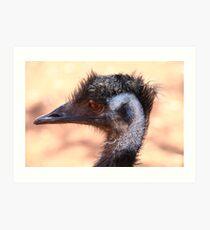 Emu 1 Art Print