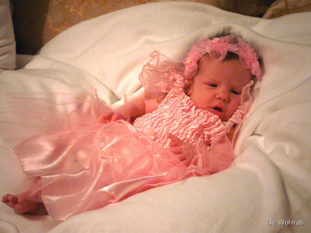 Isabella 2 weeks old  by Liz  Wohlrab
