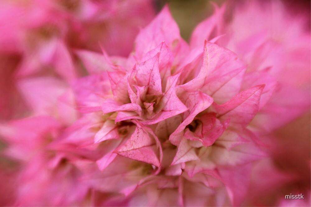 Just pink by misstk