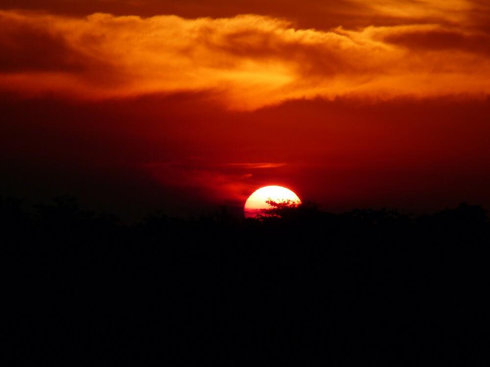 sunset - sondela, South Africa by nikivandersmagt