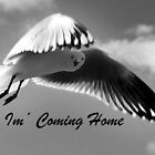 I'm Coming Home by Eve Parry