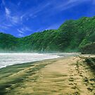 Piha Beach New Zealand by CMDRShane