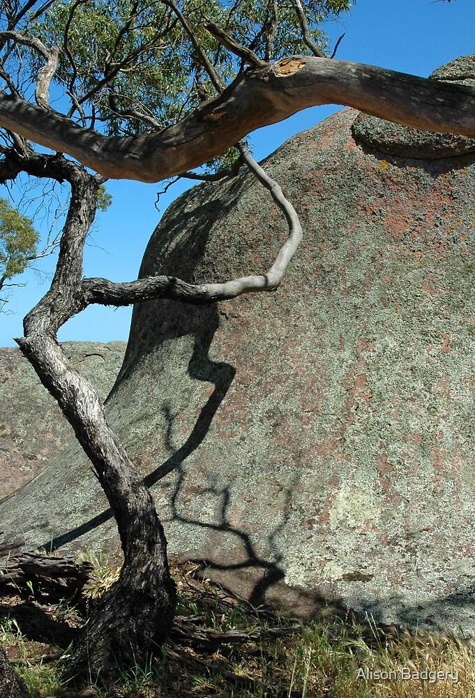 Shadow Shapes, Murphy's Haystacks, SA by Alison Badgery