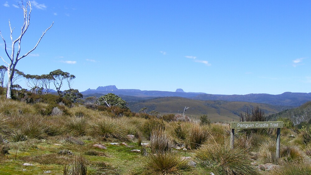 near Cradle Mt - at Rocky Mount Lookout   (Tas) by gaylene