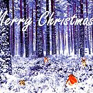 Winter Wonderland Christmas Card by EuniceWilkie