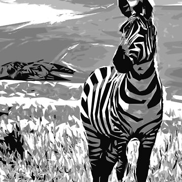 Black and white Zebra  by NoraMohammed