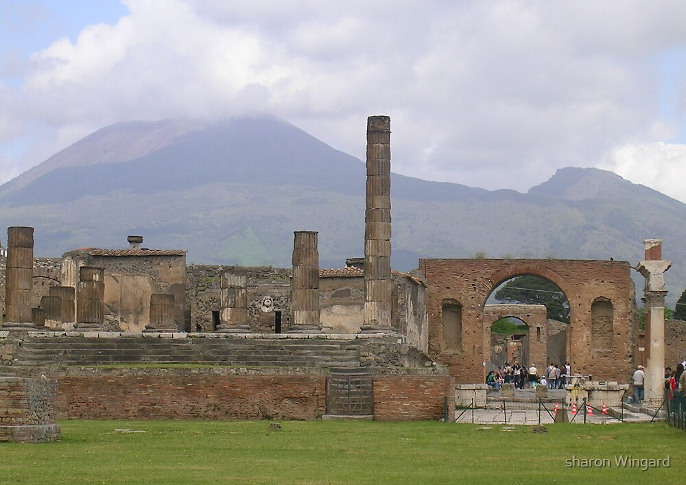 pompeii by sharon Wingard