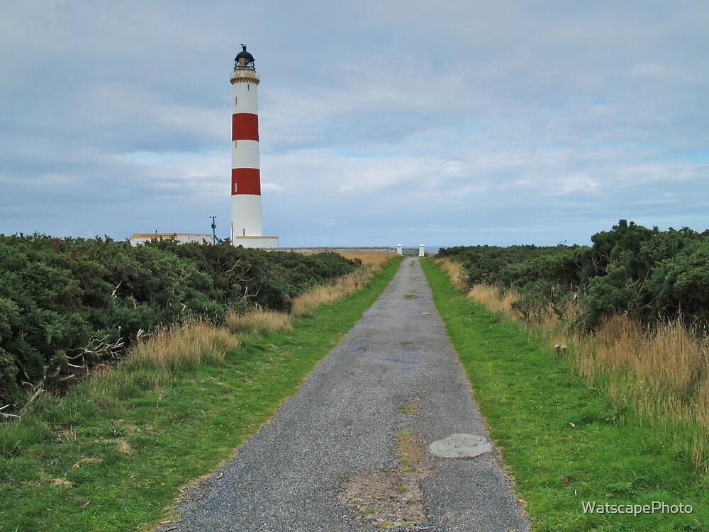 Tarbat Ness Lighthouse by WatscapePhoto