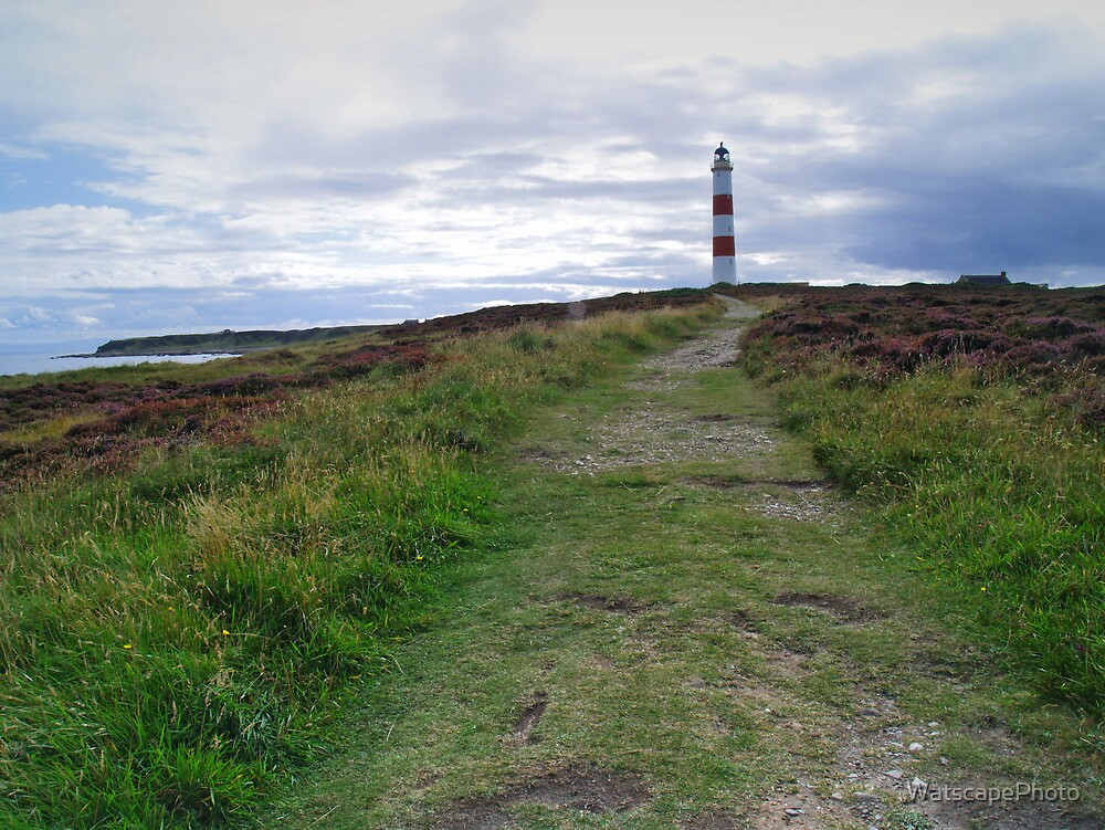 Tarbat Ness Lighthouse by WatscapePhoto