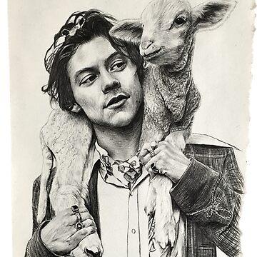 Little lamb by emmadk