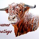 Snowy Highland Cow with 'Seasons Greetings' by EuniceWilkie