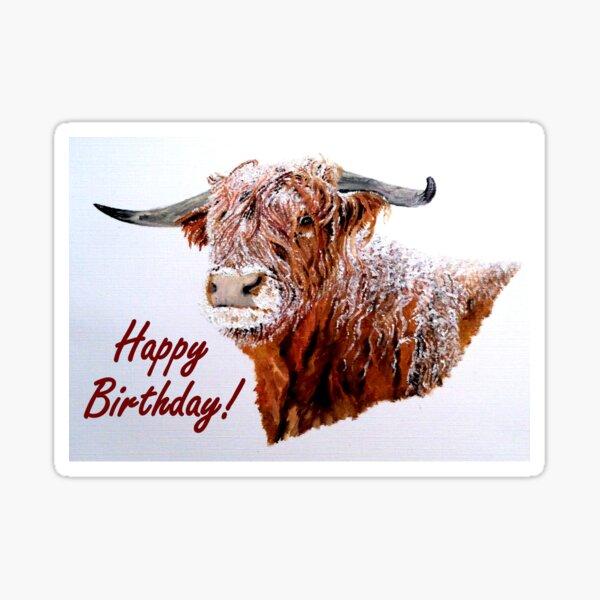 Snowy Highland Cow Birthday Card Sticker