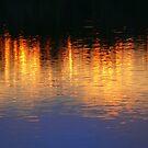 Sunset Lights by Lynda Kerr