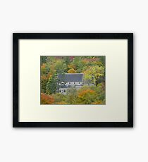In the Heart of the Woods Framed Print