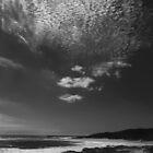 Over the Ocean ... by Angelika  Vogel
