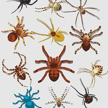 Funny Spiders Art | Cute Halloween Scary Spiders Art Gift by NBRetail