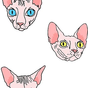 sphynx cat black and white stripes (naked cat) by B0red