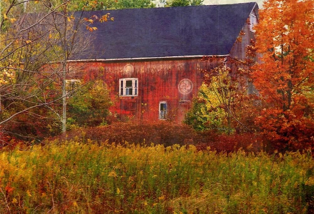 Barn at Lake Nockamixon..... by DaveHrusecky
