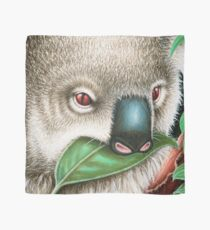 Cute Koala Munching a Leaf Scarf