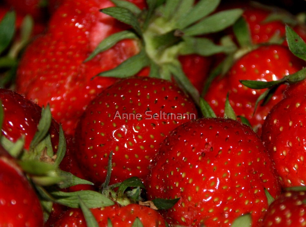 strawberries by Anne Seltmann