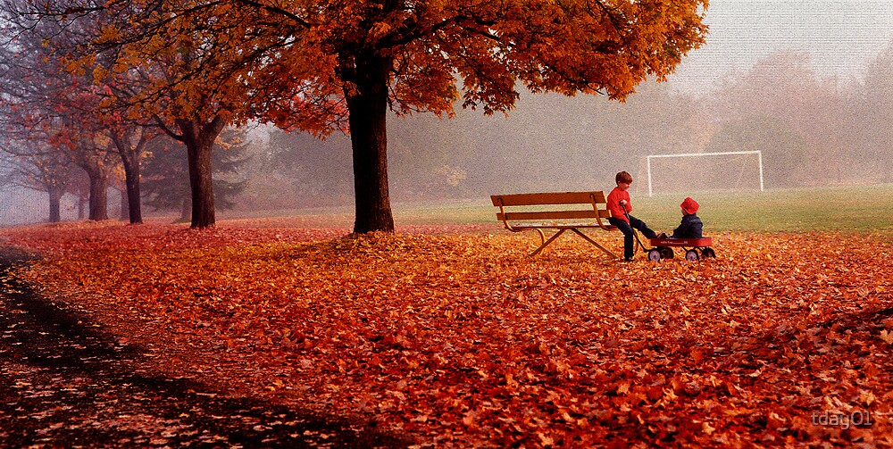 Little Goalies-Fall Morning by tday01