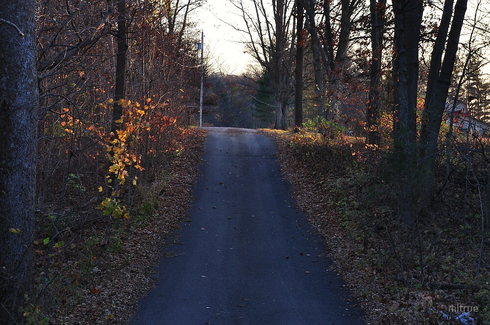 Country road in early November by mltrue