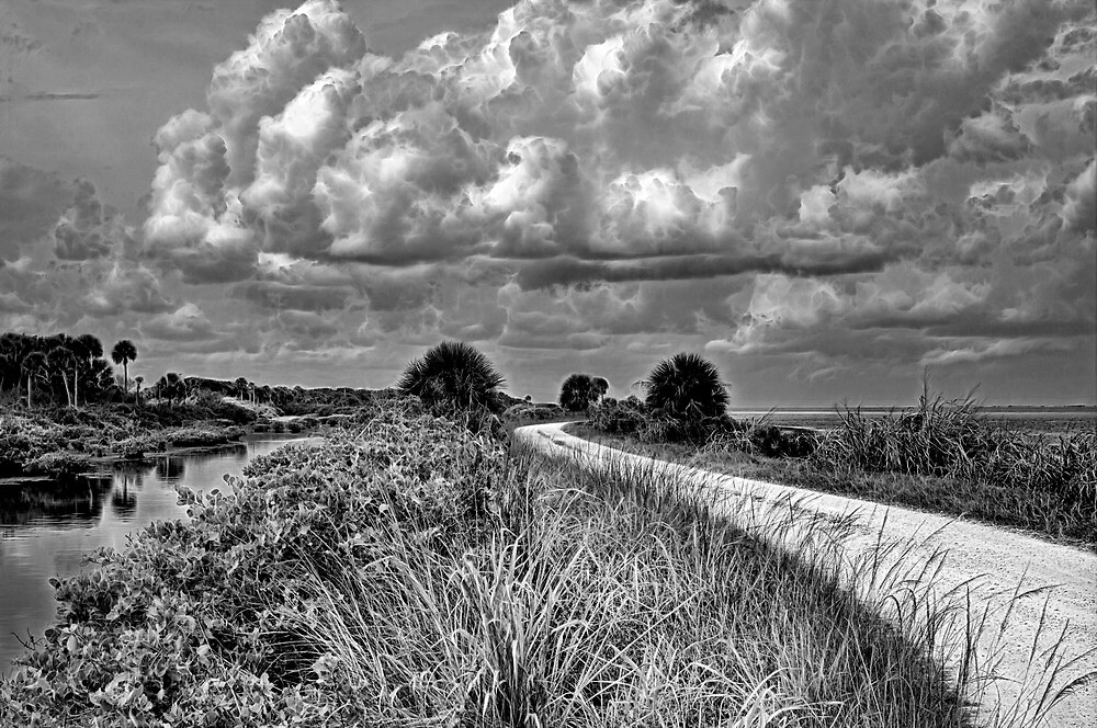 On the Road by Michael Wolf