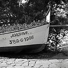Joaquina by James2001