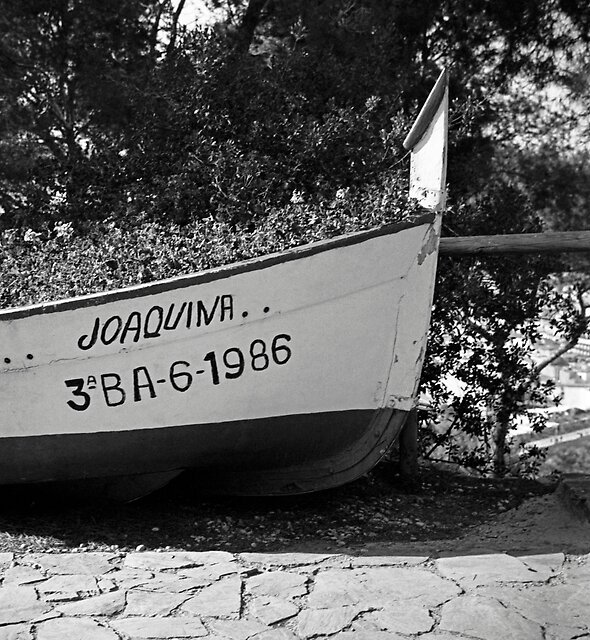 Joaquina by James2001