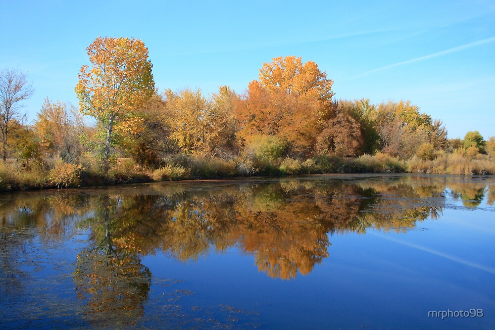 Fall reflections by rnrphoto98