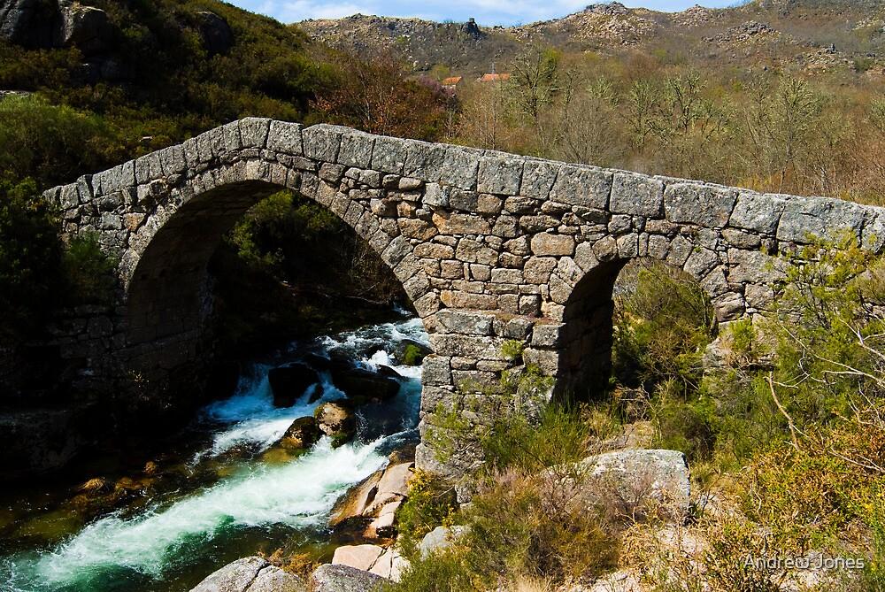 Romanesque bridge, Peneda-Geres, Portugal by Andrew Jones