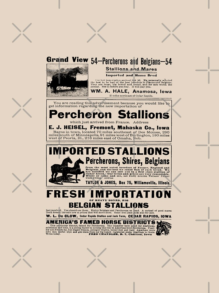 Horse Ads From 1913 by angelandspot