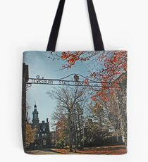 Tewksbury State Hospital and Infirmary Tote Bag