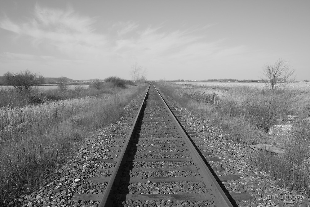 Tracks by Lynn  Gibbons