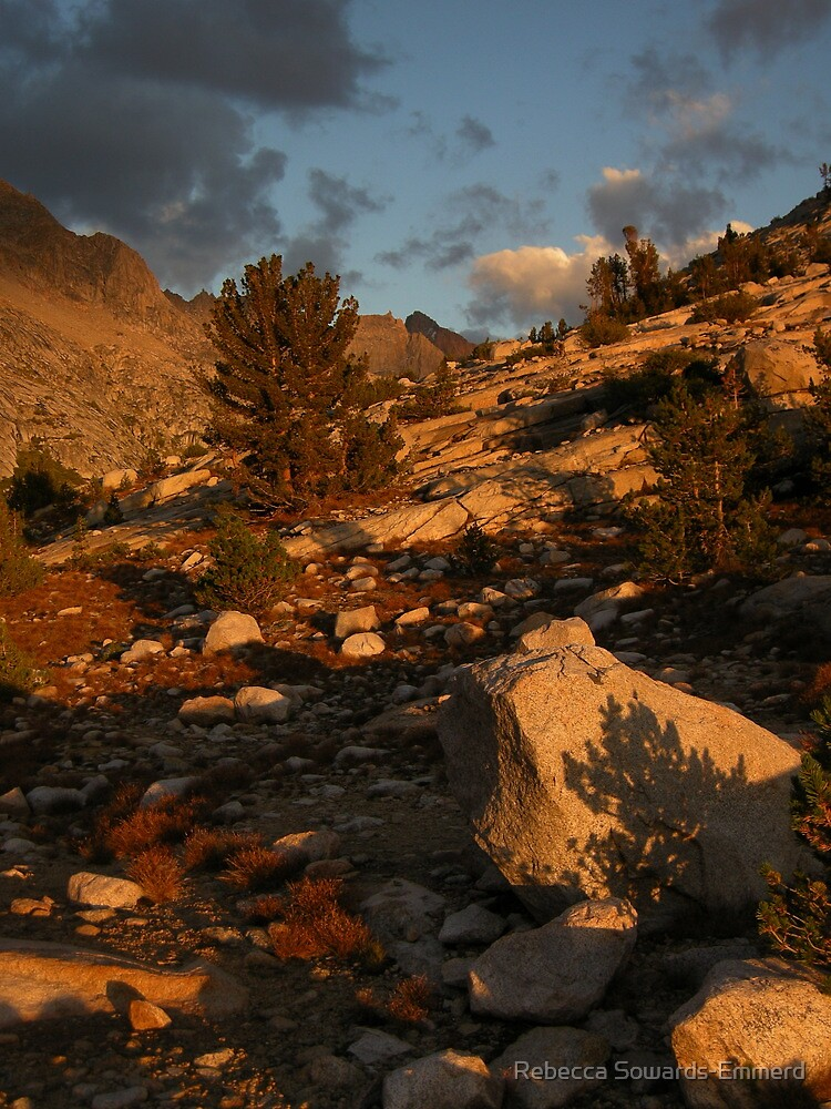 Sunset light at Evolution Lake by Rebecca SowardsEmmerd
