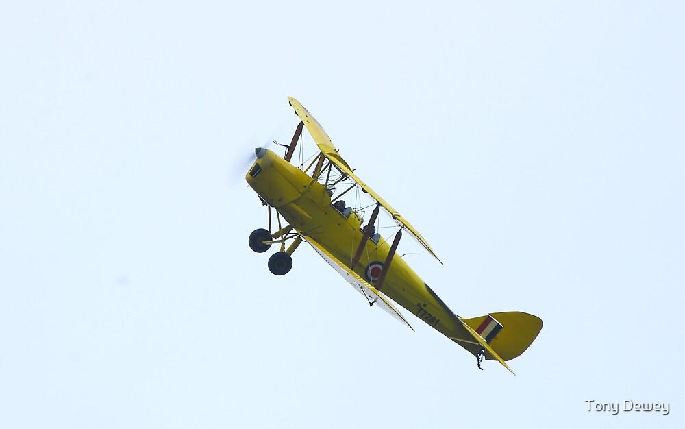 Biplane by Tony Dewey