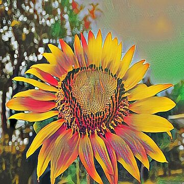 Nontraditional Sunflower by Deestylistic