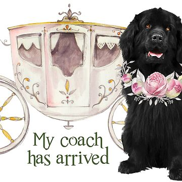 My Coach Has Arrived by itsmechris
