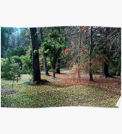 The Autumn Garden Poster