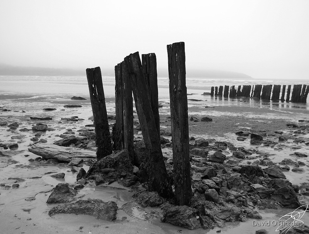 Harbour View by David O'Riordan